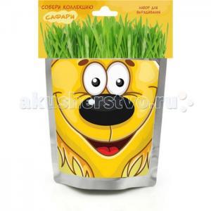 Набор для выращивания Львенок Happy Plant