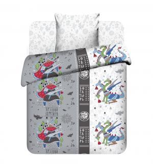Комплект постельного белья  Богатырь, цвет: серый Василек