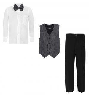 Комплект брюки/жилет/рубашка/галстук-бабочка Rodeng