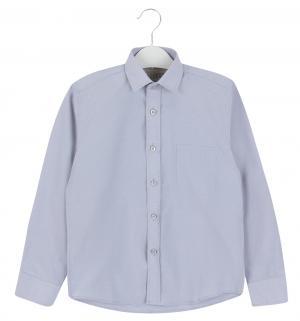 Рубашка , цвет: голубой/белый Tsarevich