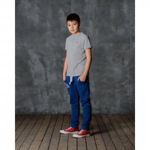 Брюки для мальчика Modniy Juk. Цвет: синий