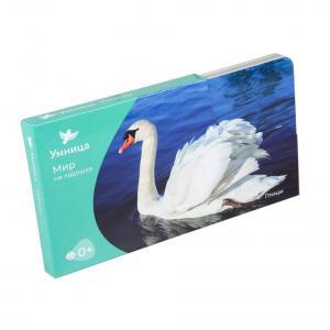 Комплект карточек  «Мир на ладошке Птицы» 0+ Умница