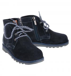 Ботинки , цвет: синий Elegami