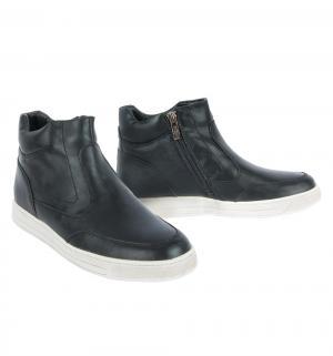 Ботинки , цвет: черный Keddo