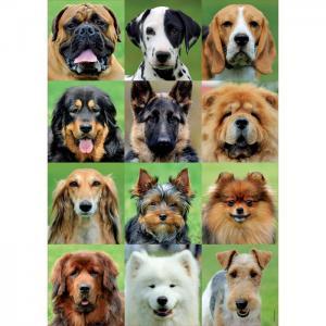 Пазл Коллаж собаки 500 деталей Educa