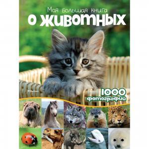 Энциклопедия Моя большая книга о животных MACHAON