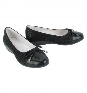 Туфли , цвет: черный Flamingo