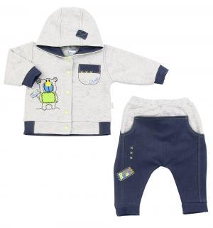Комплект джемер/брюки  Dexter, цвет: серый Ewa