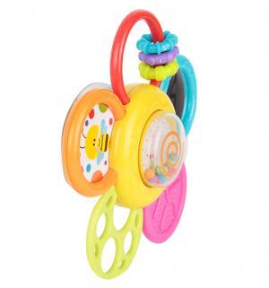 Развивающая игрушка  Цветок Winfun
