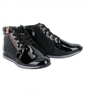 Ботинки , цвет: черный Flamingo