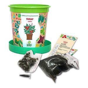 Набор для выращивания  Томат черри в горшке Happy Plant