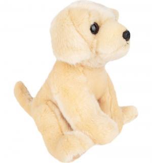 Мягкая игрушка  Ретривер 30 см Aurora