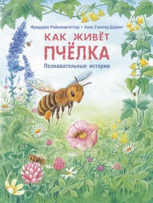 Книга  Как живёт пчёлка. Познавательные истории 0+ Энас-Книга