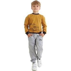 Спортивные брюки Kaftan. Цвет: серый