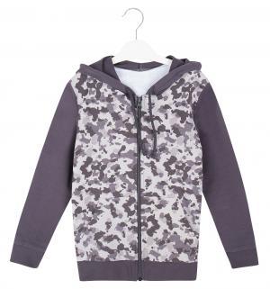Толстовка , цвет: серый Semicvet