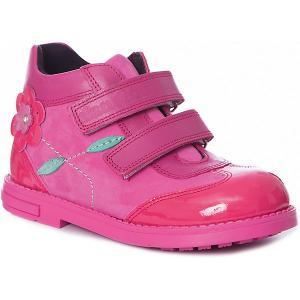 Ботинки  для девочки Dandino. Цвет: розовый