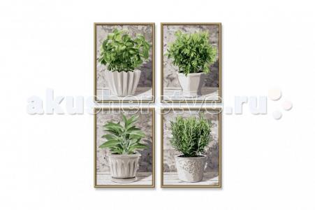 Картина по номерам 4 шт. Кулинарные травы в горшках 18х24 см Schipper