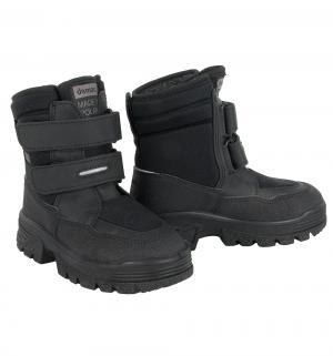 Ботинки  Matti, цвет: черный Demar