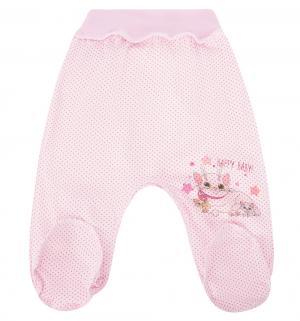 Ползунки  Мой малыш, цвет: розовый Три медведя