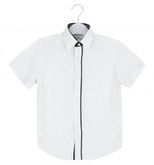 Рубашка , цвет: белый Deloras