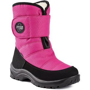 Сапоги  Trail Skandia. Цвет: розовый