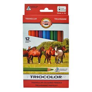 Набор цветных карандашей  Jumbo, 12 цветов KOH-I-NOOR. Цвет: красный
