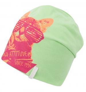 Шапка  Кот в очках, цвет: зеленый IcePeak