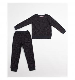 Комплект джемпер/брюки , цвет: серый Bodo