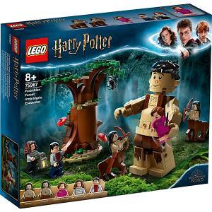 Конструктор  Harry Potter 75967: Запретный лес: Грохх и Долорес Амбридж LEGO