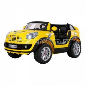 Электромобиль  Mini Beachcomber JJ298 Farfello