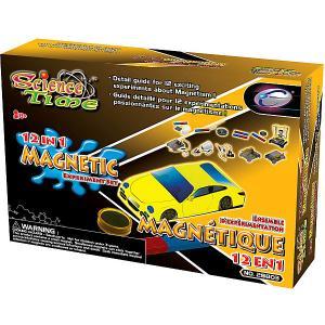 Набор для исследований  Эксперименты с магнитами Eastcolight