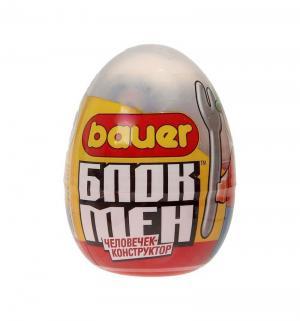 Конструктор  Игрушка в яйце Bauer