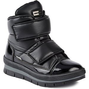 Утепленные ботинки Sector  Navigator Jog Dog. Цвет: черный
