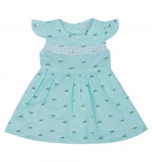 Платье , цвет: зеленый Малинка
