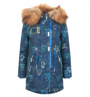 Куртка  Шакира, цвет: синий Аврора