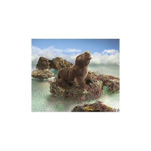 Мягкая игрушка  «Детеныш морского льва», 48 см Folkmanis. Цвет: разноцветный