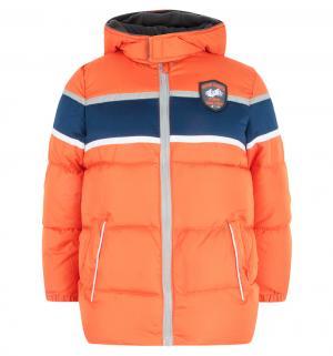 Куртка , цвет: оранжевый iXTREME by Broadway kids