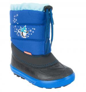 Сноубутсы  Kenny, цвет: синий Demar