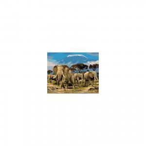 Холст с красками по номерам Семья слонов 40х50 см Издательство Рыжий кот