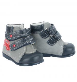 Ботинки , цвет: серый/синий Скороход