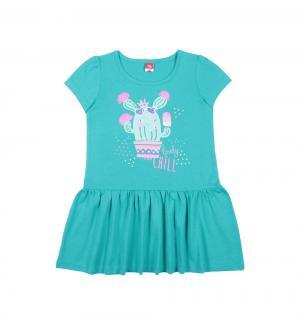 Платье , цвет: зеленый Cherubino