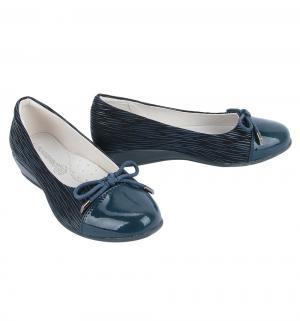 Туфли , цвет: синий Flamingo
