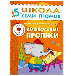 Книга развивающая Шсг «Дошкольные прописи» 5+ Школа Семи Гномов
