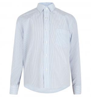 Рубашка , цвет: голубой Imperator