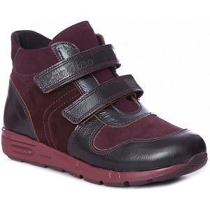 Ботинки  для девочки Dandino. Цвет: бордовый