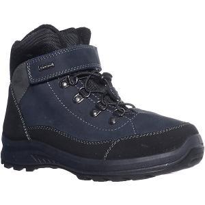 Утеплённые ботинки Котофей. Цвет: черный