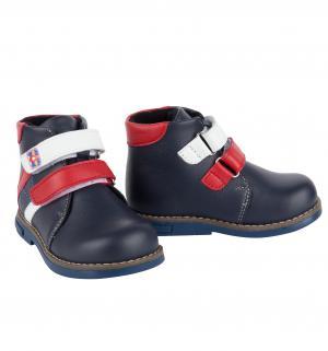 Ботинки , цвет: синий Shagovita