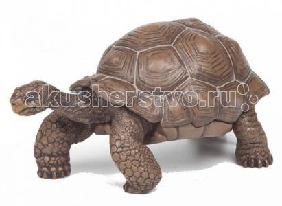 Игровая реалистичная фигурка Галапагосская черепаха Papo