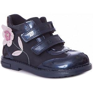 Ботинки  для девочки Dandino. Цвет: синий