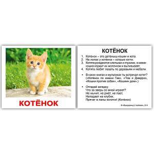 Набор обучающих мини-карточек  Домашние животные 40 штук Вундеркинд с пелёнок